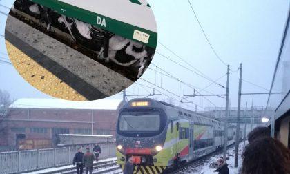 """Treno congelato si guasta, la rabbia dei pendolari """"prigionieri"""" per ore al gelo  VIDEO FOTO"""
