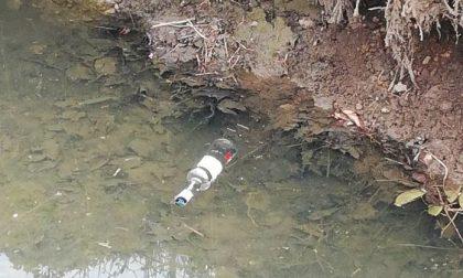Roggia invasa dai rifiuti e quella bottiglia di sambuca che non manca mai FOTO