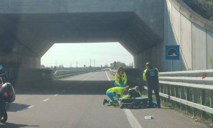 Ciclista cade durante allenamento: non è grave