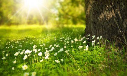 Un 25 aprile col sole, ma poi torna la pioggia…