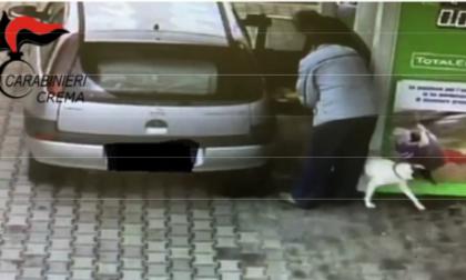 Abbandona il cane dal benzinaio, beccato e denunciato
