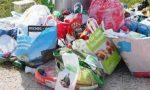 Spazzatura nel parco a Cologno, Codacons diffida il Comune