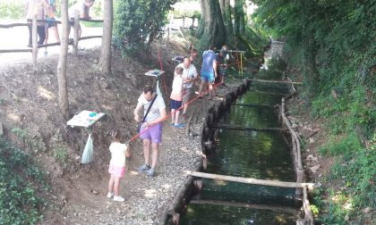 Pesca alla trota al fontanile Malago per tutti i bambini FOTO