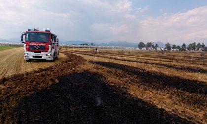 Brucia un campo, pompieri al lavoro a Cividate
