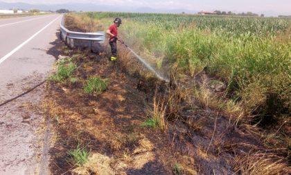 Morengo incendio di sterpaglie in un campo