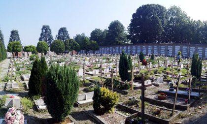 Erbe infestanti al cimitero di Crema
