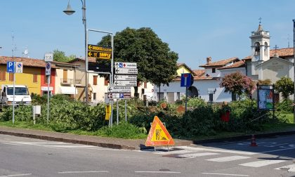 """Via gli alberi, nasce così la """"nuova"""" piazza Papa Giovanni XXIII FOTO"""