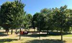 Nuovi giochi in arrivo nei parchi trevigliesi