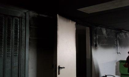 Sei incendi in tre mesi, è caccia al piromane FOTO