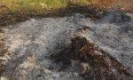 Roghi clandestini per bruciare rifiuti, segnalazioni in Comune