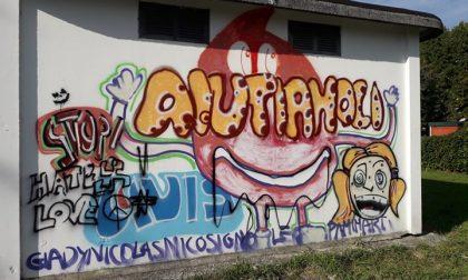 Ancora vandali al parco, in paese scatta la polemica FOTO