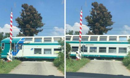 Treni sfrecciano ai passaggi  a livello senza sbarre: sulla Treviglio-Cremona interviene il ministro