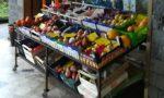 Cassano ladri nell'alimentari rubano il registratore di cassa e 500 euro in monete