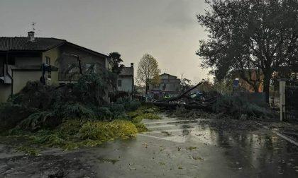 Il maltempo riaccende la guerra ambientalista a Romano