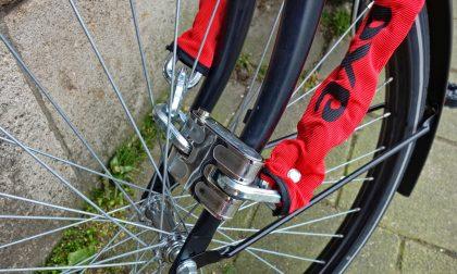 Ruba la bici nel cortile sbagliato