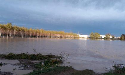 """Maltempo Bassa   Morengo e Cologno senza corrente """"State lontani dal fiume"""""""