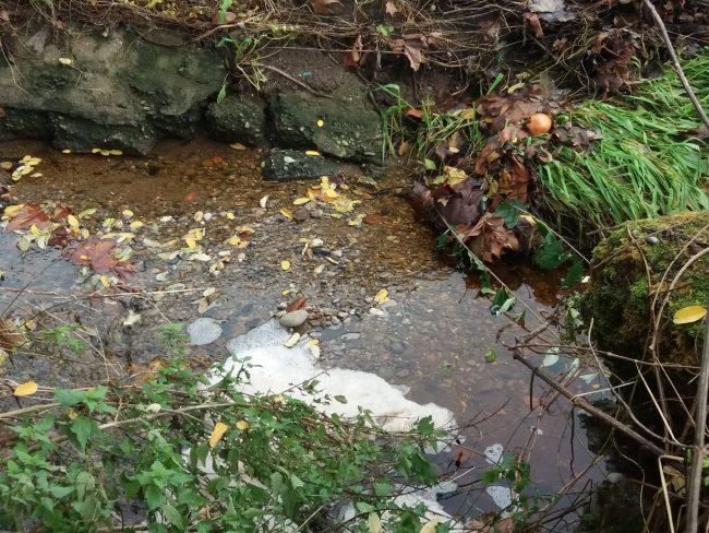 Schiuma nella roggia e acqua color ruggine, indagini in corso FOTO VIDEO