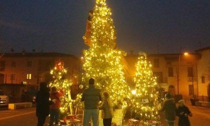 Alberi di Natale in piazza per aiutare il Veneto colpito dalle alluvioni FOTO