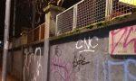 Attacca manifesto per gatto smarrito e becca multa da 450 euro FOTO
