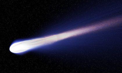 Naso all'insù per la cometa di Natale