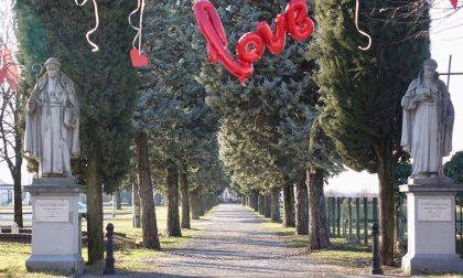 Basella tappezzata di cuori: nella frazione l'amore è nell'aria FOTO