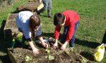 Il Consiglio dei ragazzi vuole l'orto didattico a scuola