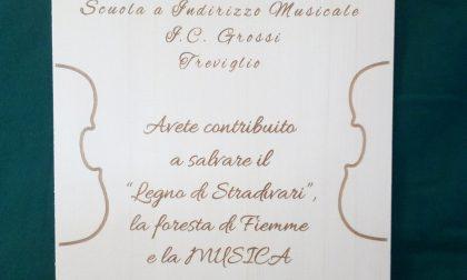 Bosco dei violini: dai ragazzi delle Grossi 3mila euro per salvare gli alberi della Val di Fiemme