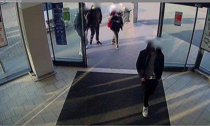 Minaccia un cliente con un taser, baby gang in azione nei supermercati