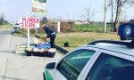 Festa della donna, vendeva mimose abusivamente: maxi multa