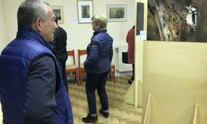 Roberto Musumeci in mostra con «Visti da vicino» FOTO