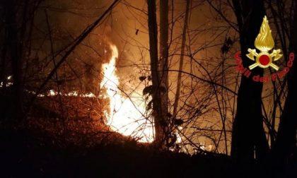 Bosco distrutto dalla grigliata: 13 milioni di multa a due ventenni