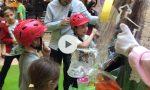 Uova d'autore benefiche al Centro commerciale Treviglio (e poi arriva il super uovo) VIDEO