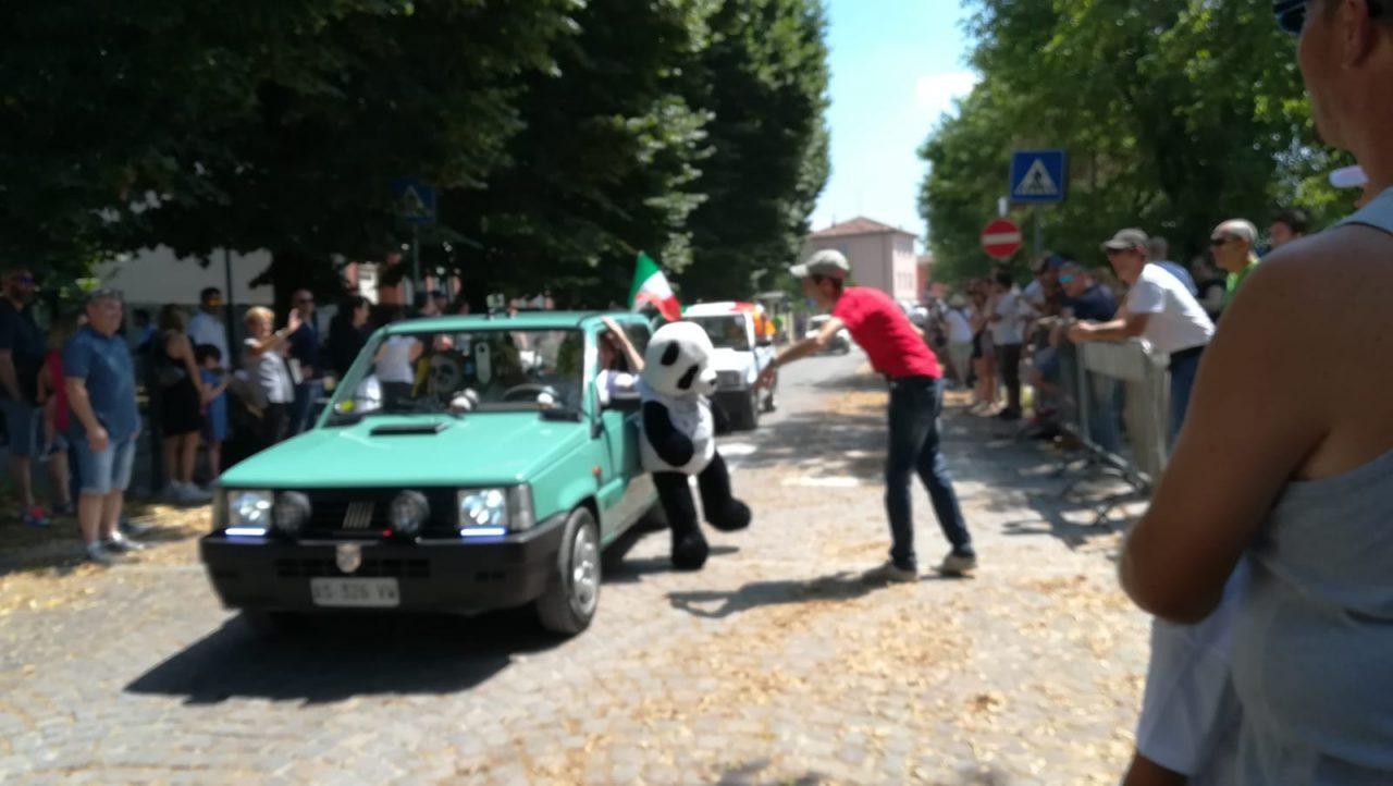 panda a pandino