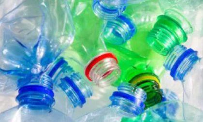 """#iosonoambiente, Malanchini contro la borraccia in metallo: """"La plastica si ricicla"""""""