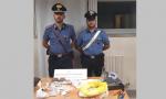 Controlli antidroga a Romano, arrestato pusher 35enne