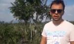 Specie arboree aliene minacciano la riserva di Malpaga e Basella