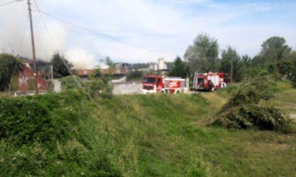 In fiamme un cascinale, i pompieri salvano due cani a Mozzanica