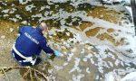 Schiuma nel fosso, la Polizia locale interviene a Spirano