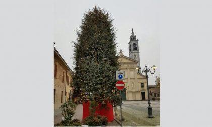Donato l'albero di Natale per la piazza