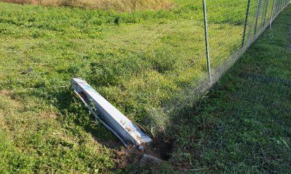 Sfonda la recinzione dell'allevamento e le lepri scappano nei campi