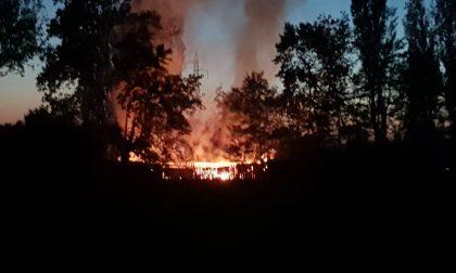 Tragedia a Romano, Giuseppe Messina muore carbonizzato nell'incendio della sua baracca FOTO