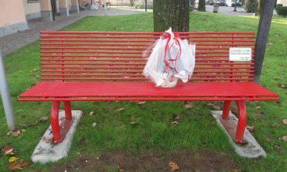 Vaso di fiori anonimo sulla panchina rossa
