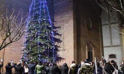 A Nosadello acceso un albero di Natale con cinquemila luci led