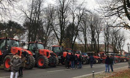 Agricoltori in festa a Caravaggio FOTO