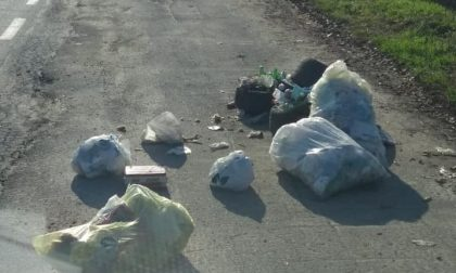 Brignano, rifiuti abbandonati in campagna: individuati e multati i responsabili