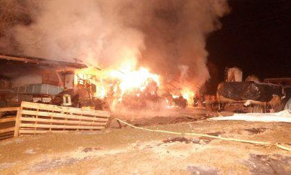 Azienda agricola devastata da un incendio a Capodanno FOTO