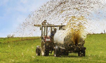 Spandimenti reflui agricoli, da domani quattro giorni di deroga