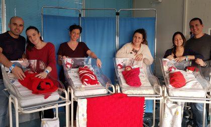 """Piccoli Babbi in Neonatologia grazie ai doni di """"Mani di mamma"""" FOTO"""