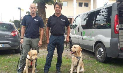 """""""Spiri"""" in prestito a Verdellino, per fiutare la droga a Zingonia"""