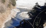 Reati ambientali in Val di Scalve, la Polizia provinciale interviene sul torrente Dezzo